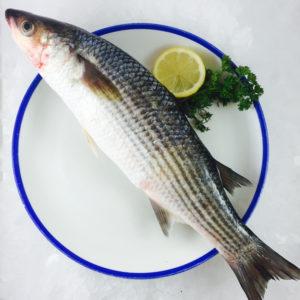 mullet-fish-nyama-tamu3