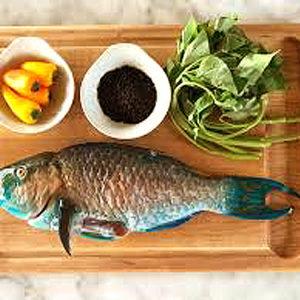 parrot-fish-nyama-tamu
