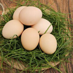 kienyeji_eggs_nyamatamu3